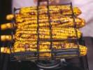 Resep Bumbu Jagung Bakar Pedas Manis Aneka Rasa